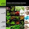 Zestaw roślin do dużego akwarium, 158 sadz., 17 gat. +GRATIS