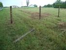 Koszenie trawy , kosą spalinową, wysoka trawa, karczowanie - 2