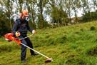 Koszenie trawy , kosą spalinową, wysoka trawa, karczowanie - 4