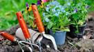 Wiosenny serwis Twojego ogrodu, bezpłatna wycena!!! - 1