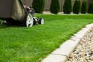 Koszenie trawników, wysokich traw i zarośli! Szybko i tanio!