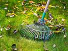 Wiosenny serwis Twojego ogrodu, bezpłatna wycena!!! - 13