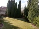 Wiosenny serwis Twojego ogrodu, bezpłatna wycena!!! - 10