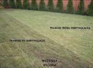 Wiosenny serwis Twojego ogrodu, bezpłatna wycena!!! - 5