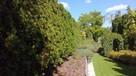 Trawa z rolki + kompleksowe zakładanie ogrodów Nawodnienie - 14