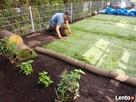 Trawa z rolki + kompleksowe zakładanie ogrodów Nawodnienie - 10