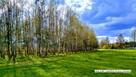 działka budowlano-leśna - 0,29 ha; Tocznabiel pow. pułtuski