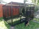 Kojec dla psa Kojce dla psów Klatki Klatka Boks Boksy - 2