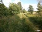 Działki na pięknych łąkach w Prabutach pow.Wyszków, 59km  Długosiodło