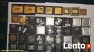 Skupuje procesory płyty komputerowe elektronikę katalizatory Łódź