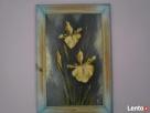 Obraz olejny z ramą 53x37 cm
