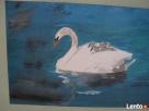 Obraz na płótnie 30x20 cm, akryl