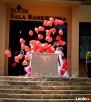 Balony z helem Rzeszów Wypuszczanie balonów na ślubie Rzeszów