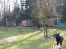 Agrohotelik dla zwierząt Pod Gruszą Zaprasza Kielce