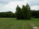 Sprzedam działki rekreacyjno-budowlane we wsi Dybki - 1