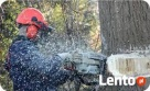 ..Wycinka drzew, ZAWIERCIE, usługi zwyżką. Firma-Marcin Zawiercie