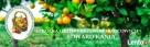 Szkółka drzewek owocowych Radomyśl Wielki