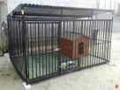 Kojec dla psa Kojce dla psów Klatki Klatka Boks Boksy 24h Piaseczno