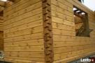 Szkodniki drewna zwalczanie Kętrzyn