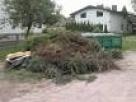Wywóz gałezi,liści,trawy z załadunkiem Warszawa - 2