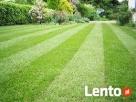 Zakładanie trawnika,niwelacja terenu ,rownanie działki - 6