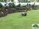 Zakładanie trawnika,niwelacja terenu ,rownanie działki - 5