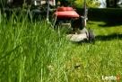 Koszenie traw, karczowanie zarośli, wycinka drzew