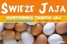 Sprzedaż Jajek, Jaj, Jaja-Masa Jajeczna-Poznań, Opalenica, Buk