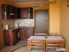 Apartament w Stegnie do wynajęcia - 4