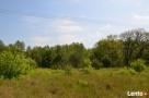 Działka w malowniczej okolicy rzeki i lasów - 5