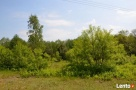 Działka w malowniczej okolicy rzeki i lasów - 3