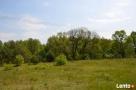 Działka w malowniczej okolicy rzeki i lasów - 6