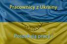 Pracownicy z ukrainy