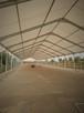Hale namiotowe , przemysłowa - 1