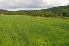 Piękna działka w Mrzygłodzie o pow. 0,2923 ha - 1