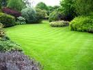 Usługi ogrodnicze, profesjonalne koszenie trawników.