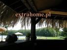 Parasol ogrodowy, parasol plażowy, parasol tropikalny, Hawaj - 5