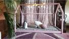 Łóżko domek z barierkami Bella w kolorze różowym 120 x 60 cm
