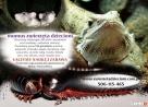 warsztaty zoologiczne z udziałem zwierząt - 2