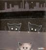 NIEBANALNY PREZENT-szalone kolaże kotów!!! - 1