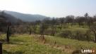 Sprzedam. działke rolno-budowlaną 4.3 ha w Okocimiu - 2