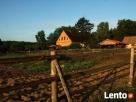 Agroturystyka Lubuska - 6