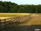 Agroturystyka Lubuska - 3