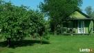 Oliwkowa Chata-domki-pokoje-kwatery pracownicze 25PLN - 5