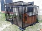 Kojec dla psa Kojce dla psów Klatki Klatka Boks Boksy 24h - 2