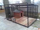 Kojce dla Psów Kojec dla Psa Klatki Klatka Boks Boksy 24h!!! - 2