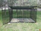 Kojec dla psa Kojce dla psów Klatki Klatka Boks Boksy 24h - 5