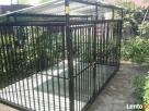 Kojce dla psów Kojec dla psa Boks Boksy Klatki Klatka 24h!!! - 5