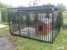 Kojce dla psów Kojec dla psa Boks Boksy Klatki Klatka 24h!!! - 6