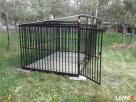 Kojec dla psa Kojce dla psów Klatki Klatka Boks Boksy 24h - 7